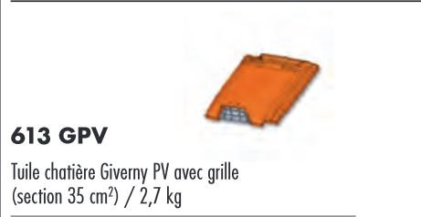 TUILE CHATIERE GIVERNY AVEC GRILLE SABLECHAMPAGNE PUREAU VARIABLE BAVENT