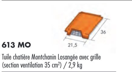 TUILE CHATIERE MONTCHANIN LOSANGEE ROUGEAVEC GRILLE